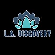 LA Discovery S