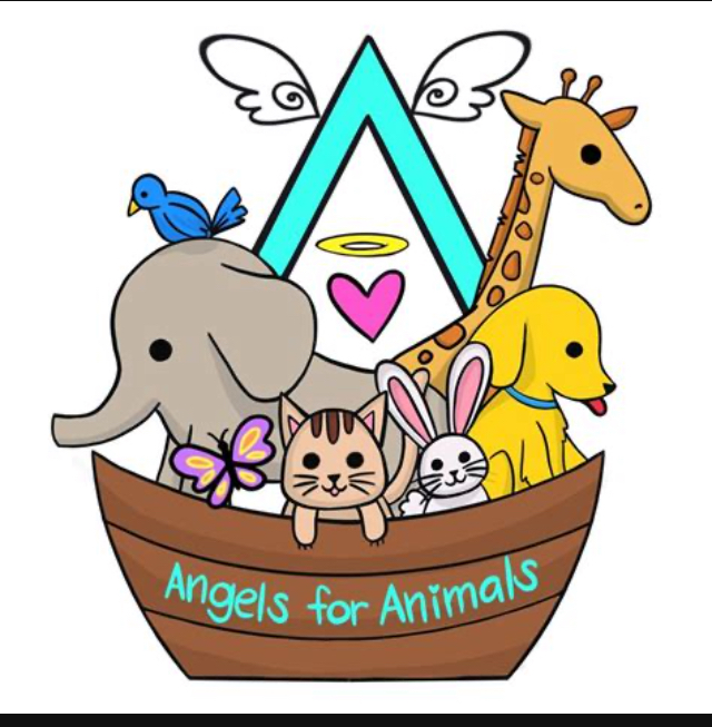 Angels for Animals t