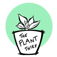 The Plant Thief C